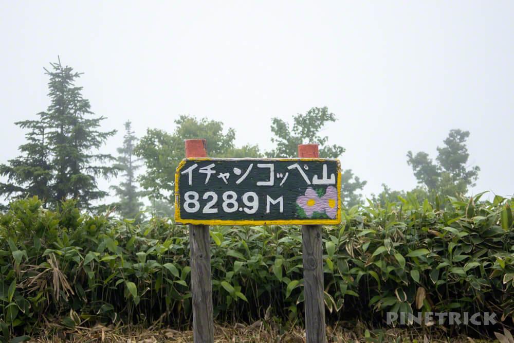 イチャンコッペ山 登山 北海道 支笏湖 785 ガス 霧 山頂