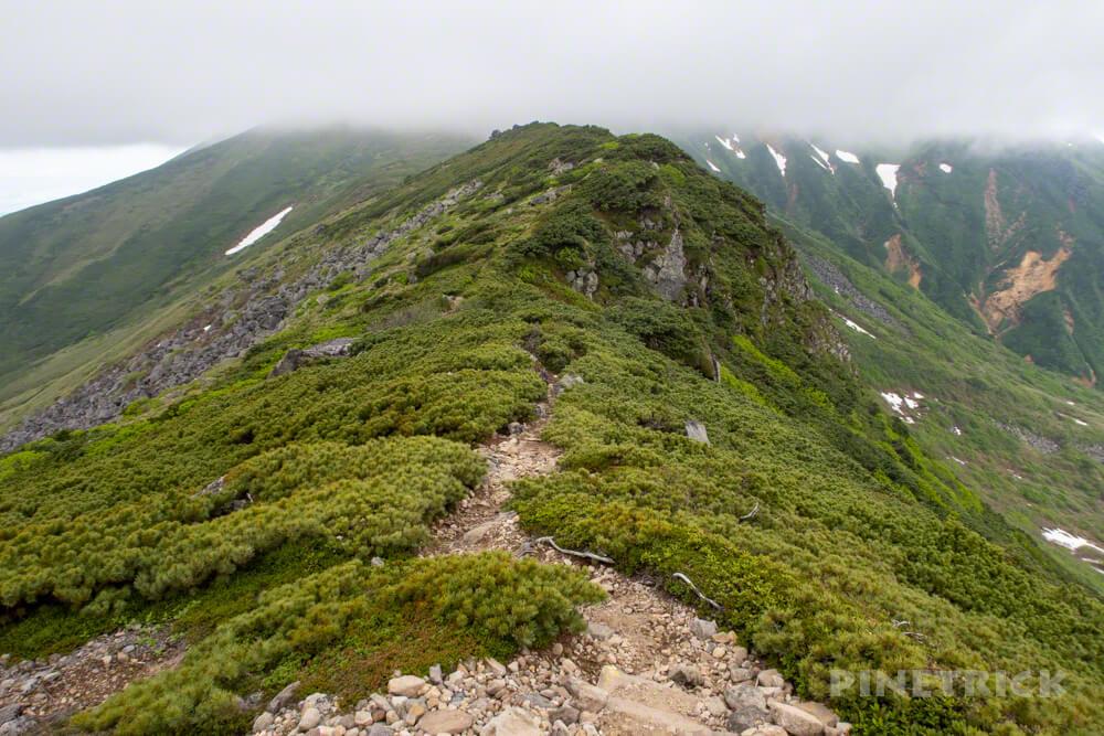 十勝岳連峰 登山 山道 北海道