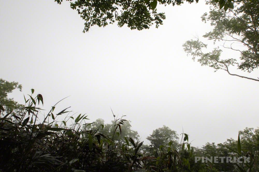 芦別岳 登山 新道コース 呻吟坂 急登 北海道 見晴台