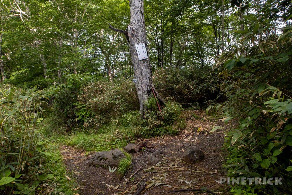 芦別岳 登山 新道コース 急登 北海道 旧道コース 分岐 鶯谷