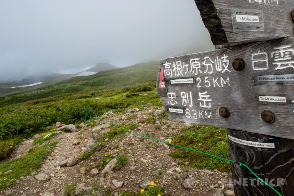 大雪山 テント泊 縦走 白雲岳避難小屋 分岐 高根ヶ原
