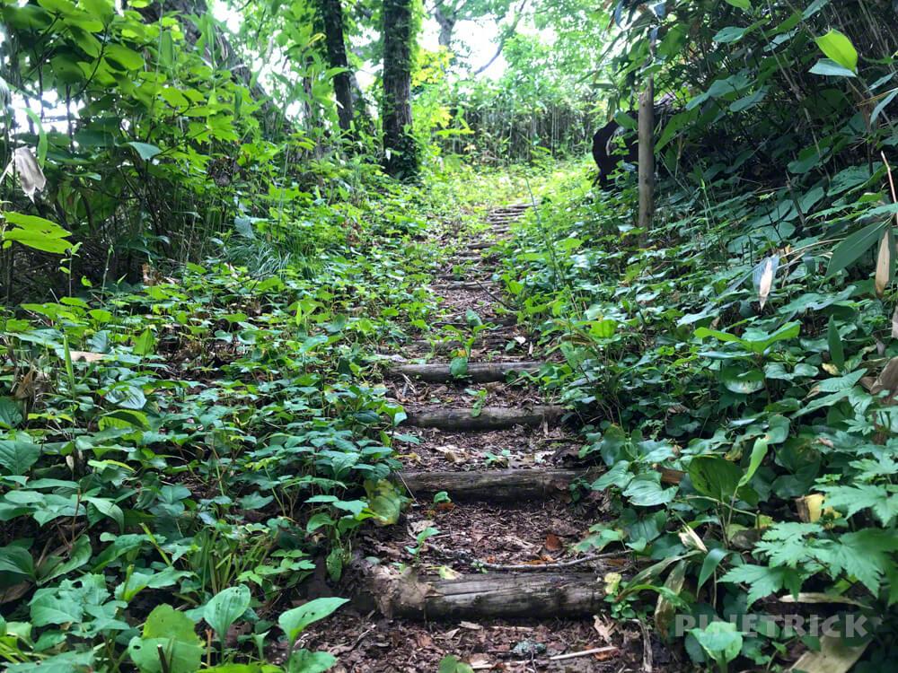 神居尻地区 道民の森 Aコース 登山口 神居尻山 北海道 iPhone7plus