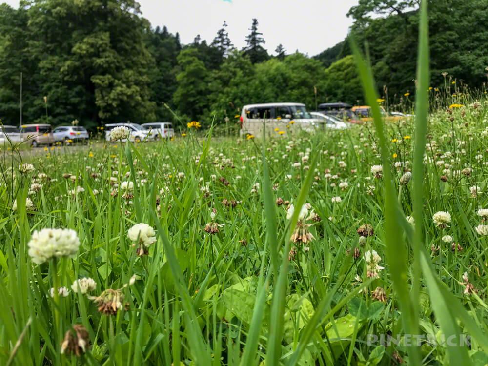 神居尻山 道民の森 神居尻地区 Bコース 駐車場 北海道 登山