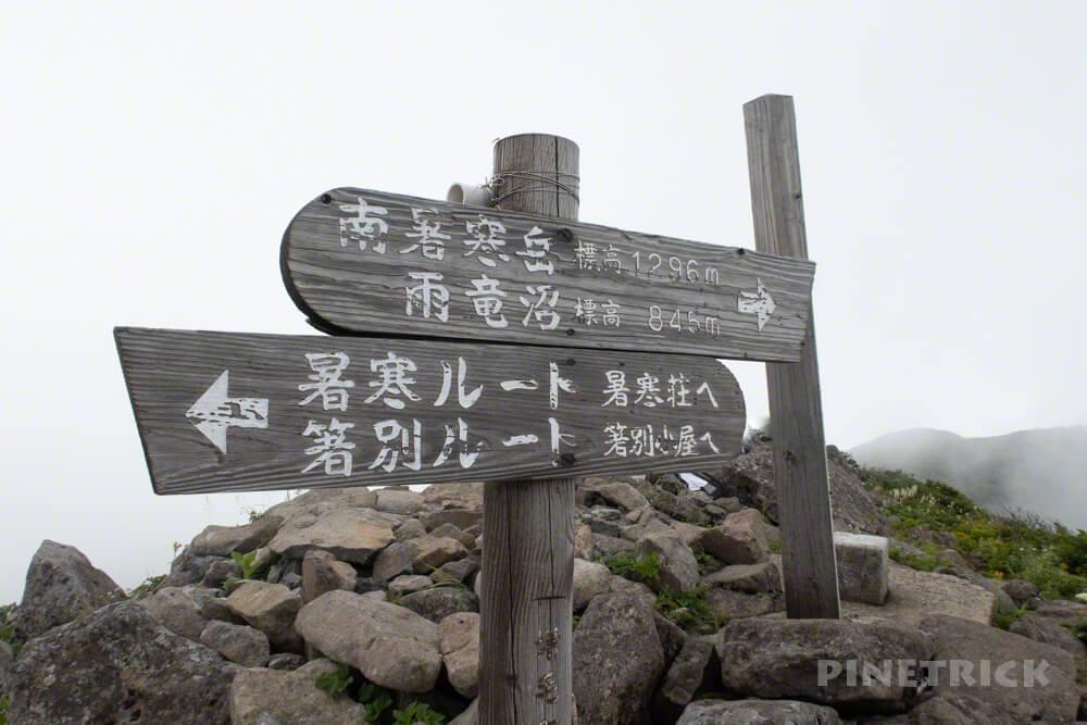 暑寒別岳 登山 暑寒ルート 北海道 ハイマツ帯 箸別ルート 山頂