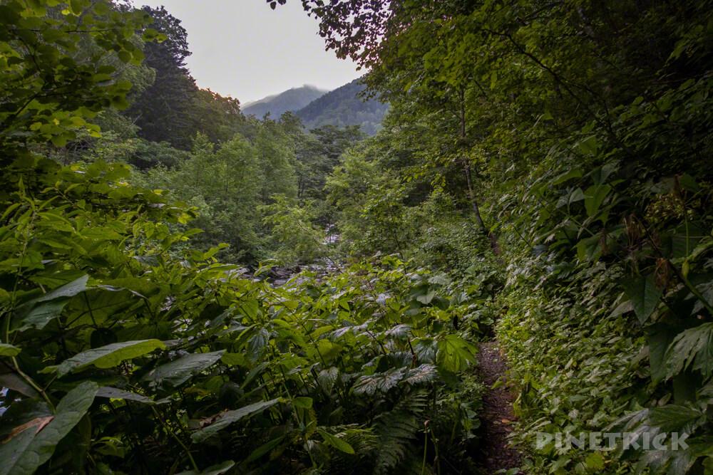 幌尻岳 チロロ林道 登山 テント泊 北海道 百名山