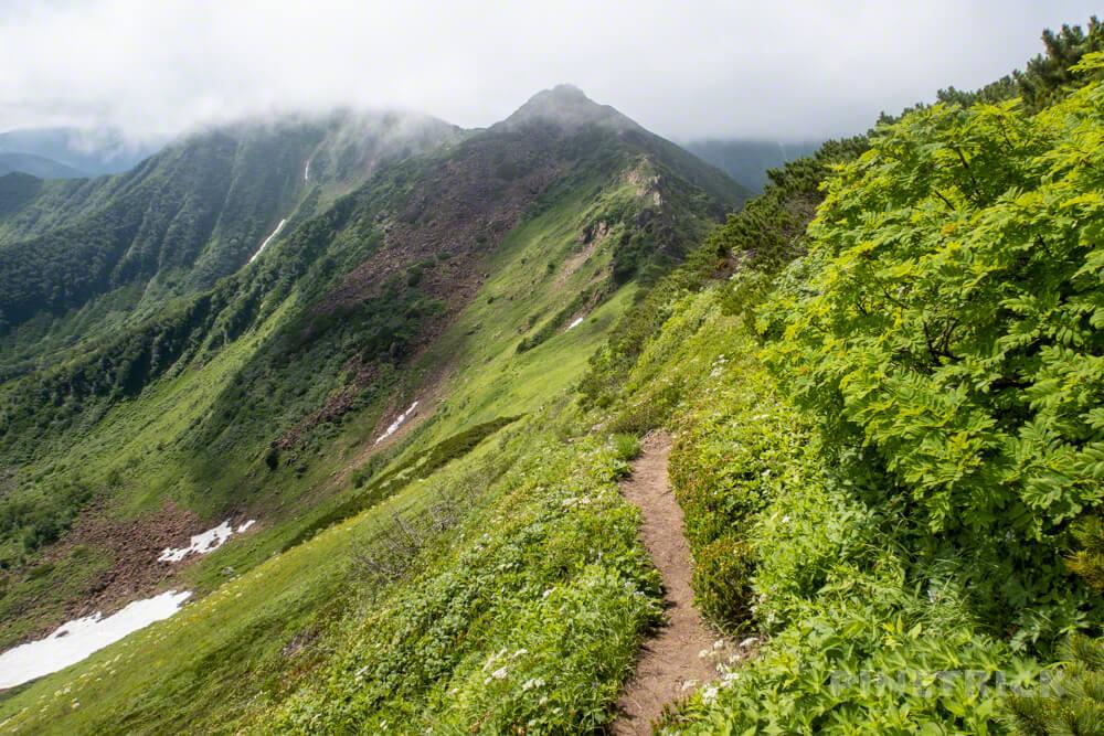 幌尻岳 チロロ林道 登山 テント泊 北海道 百名山 北戸蔦別岳