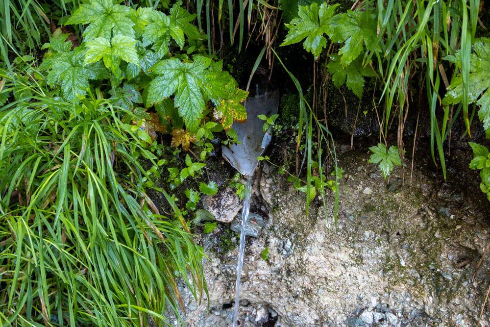幌尻岳 テント泊 チロロ林道 テラノバ 北海道 百名山 トッタの泉