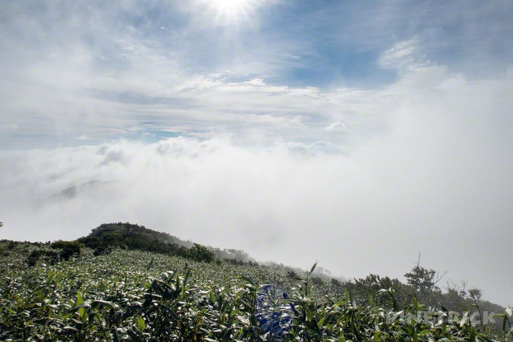 目国内岳 登山 ガス 雲海 太陽 北海道
