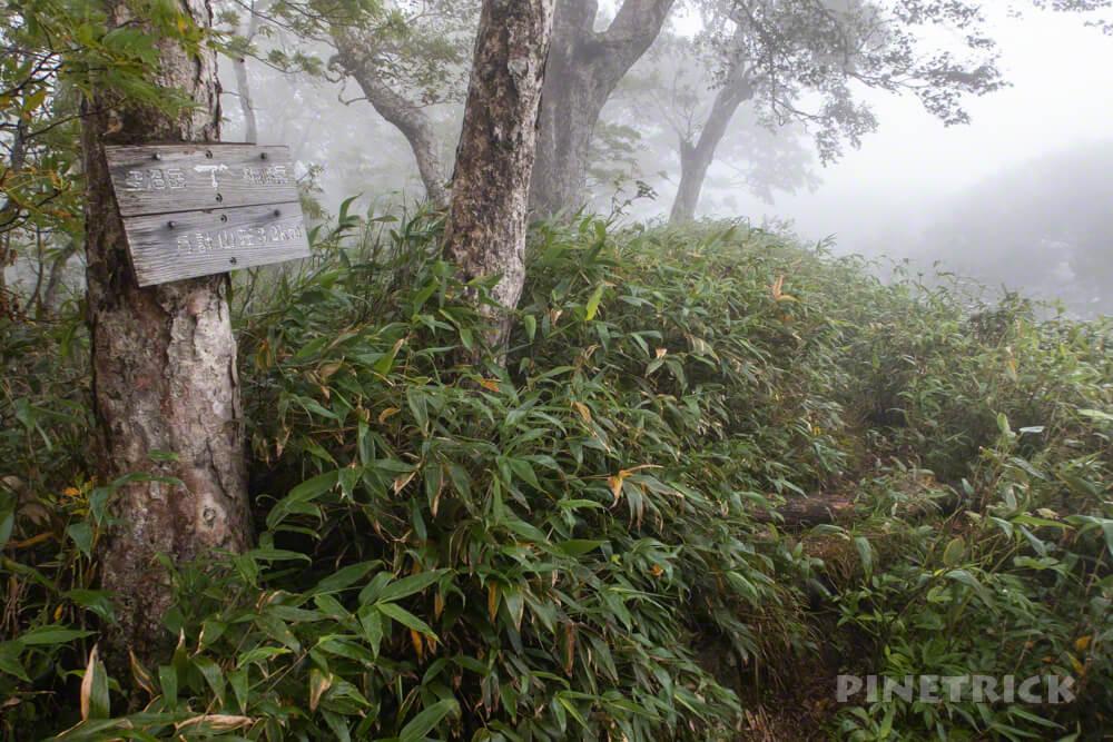 空沼岳 札幌岳分岐 遭難 ワンダーフォーゲル部 北海道 登山