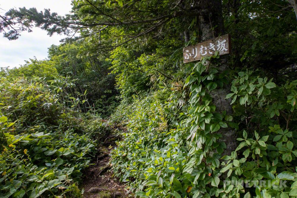 岩内岳 登山口 いわないリゾートパーク 岩内町 絶景 北海道 ふりむき坂