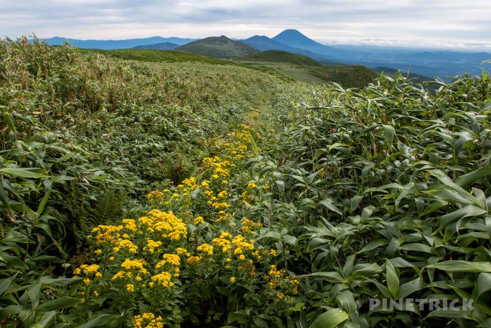 雷電山 いわないリゾートパーク ニセコ連山 羊蹄山 北海道