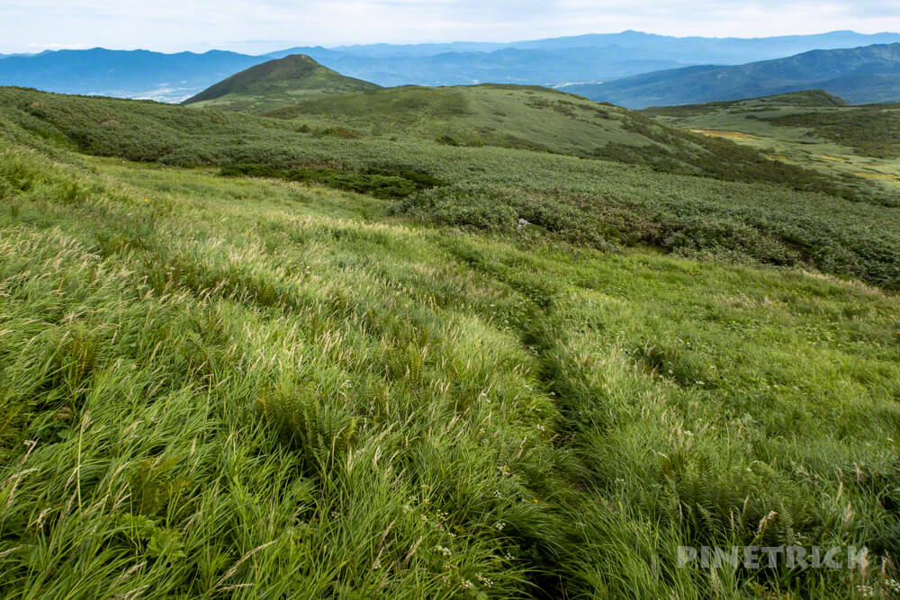 雷電山 いわないリゾートパーク 岩内岳 登山道 北海道 ニセコ