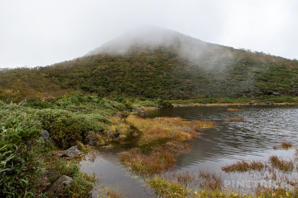 ニセコ シャクナゲ岳 登山 北海道 シャクナゲ沼