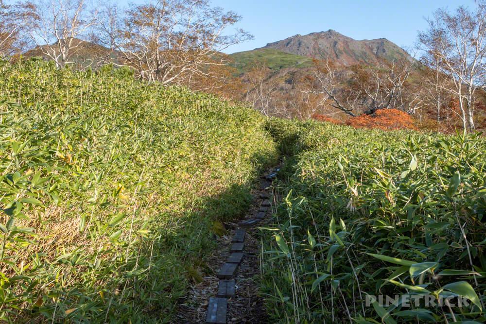 トムラウシ山 大雪山 登山 短縮コース 北海道 紅葉 泥濘 木道