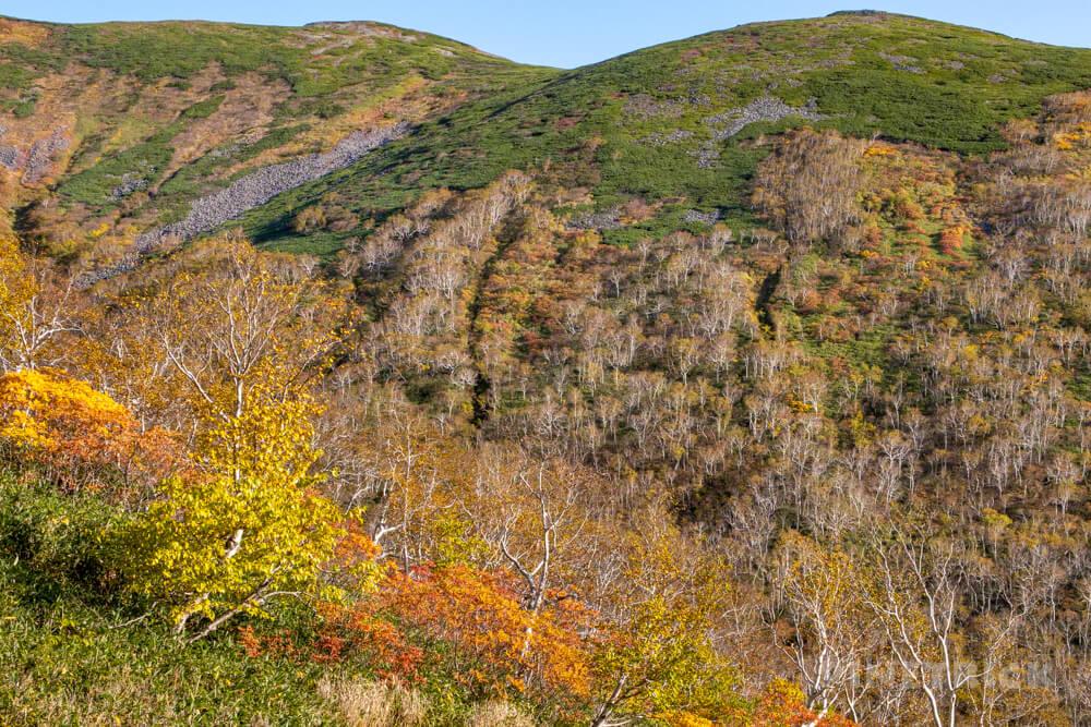 トムラウシ山 大雪山 登山 短縮コース 北海道 紅葉