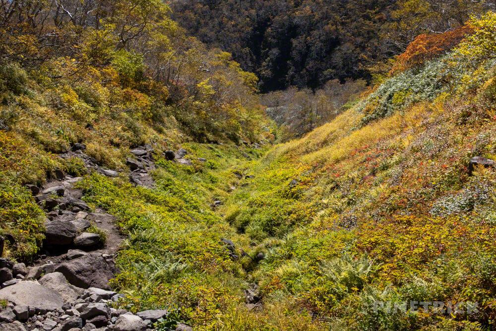トムラウシ山 大雪山 登山 短縮コース 北海道 コマドリ沢