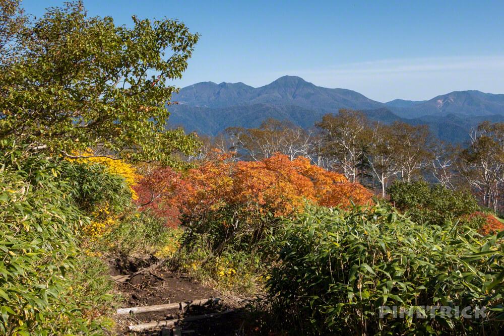トムラウシ山 大雪山 登山 短縮コース 北海道 ニペソツ山