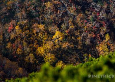 天塩岳 前天塩岳 登山口 紅葉 天気 新道コース キャンプ場 北海道