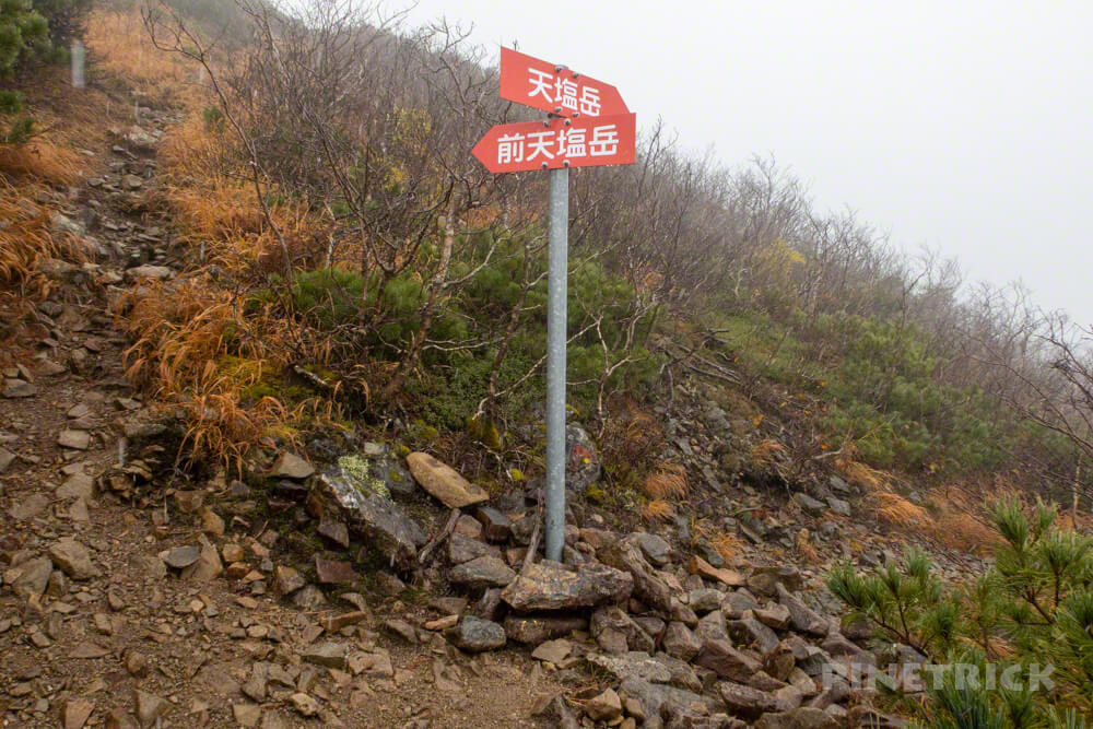 天塩岳 登山 北海道 旧道コース 分岐