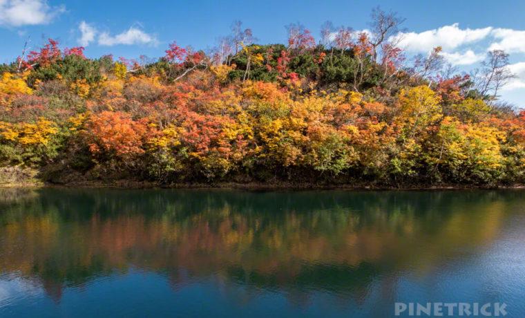 大雪高原温泉 沼めぐり 紅葉 ヒグマ情報センター 北海道 式部沼 絶景