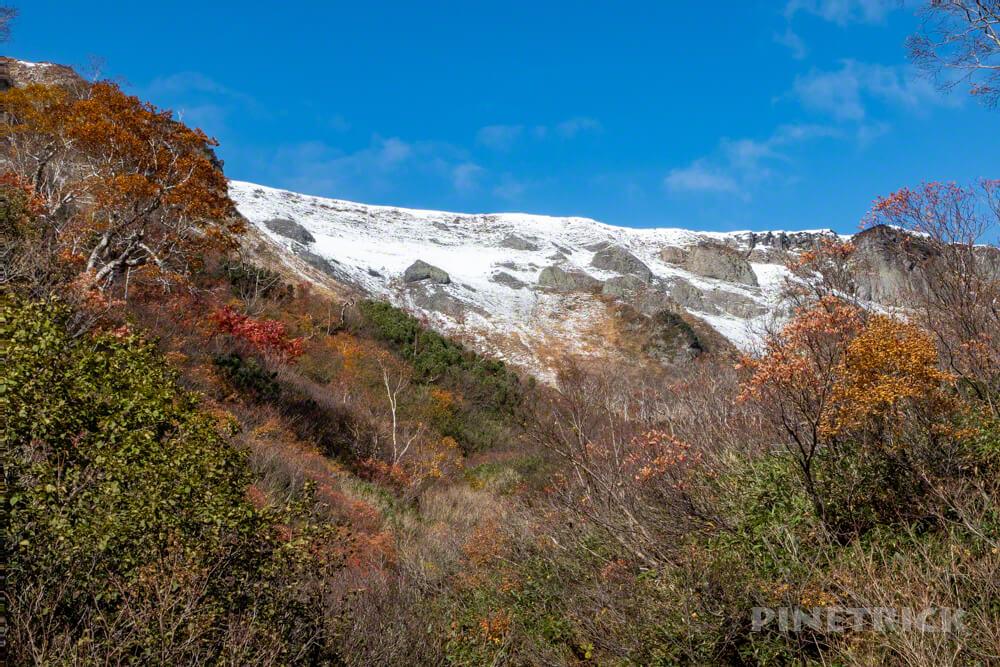 大雪高原温泉 沼めぐり 紅葉 ヒグマ情報センター 北海道 高根ヶ原
