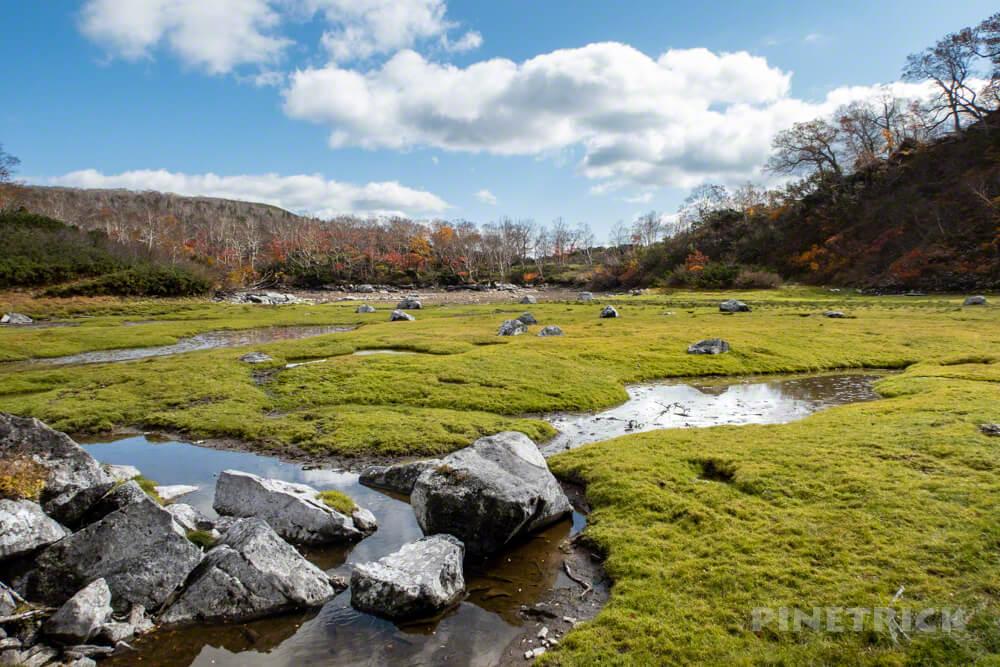 大雪高原温泉 沼めぐり 紅葉 ヒグマ情報センター 北海道 空沼 からぬま