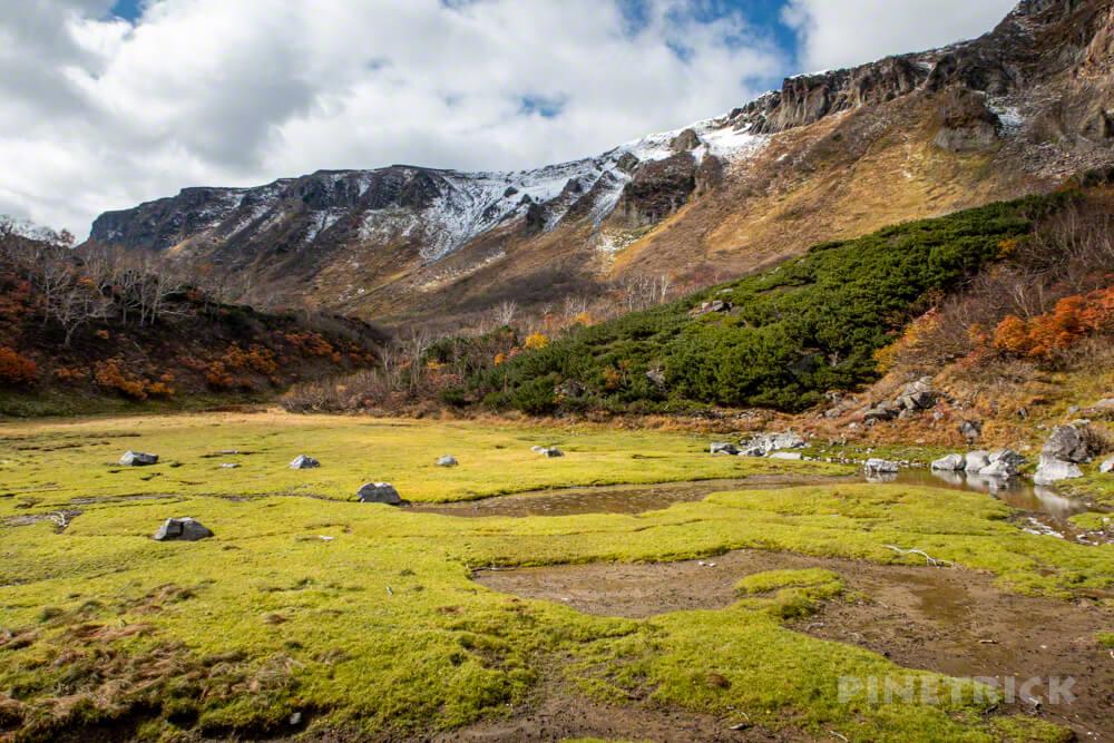大雪高原温泉 沼めぐり 紅葉 ヒグマ情報センター 北海道 空沼 からぬま 高根ヶ原