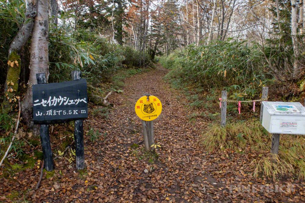 ニセイカウシュッペ山 ニセカウ 登山 北海道 林道 駐車場 登山口