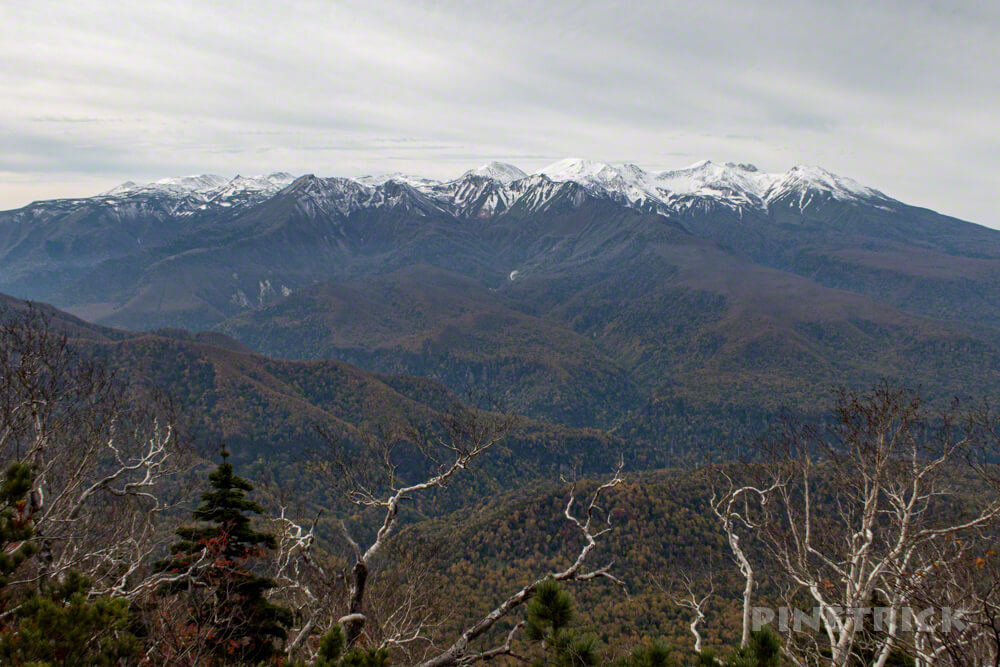 ニセイカウシュッペ山 ニセカウ 登山 北海道 登山口 表大雪 北鎮岳