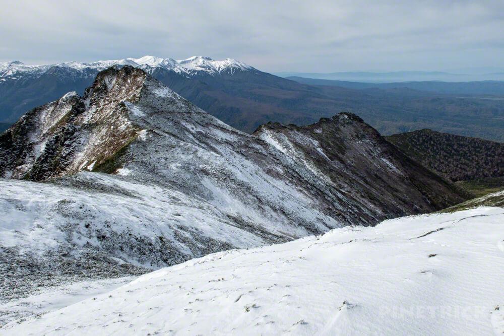 ニセイカウシュッペ山 ニセカウ 登山 北海道