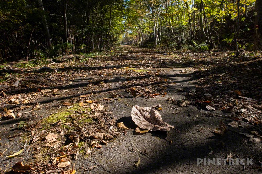 苔の回廊 楓沢 モラップ駐車場 行き方 入り口 落石