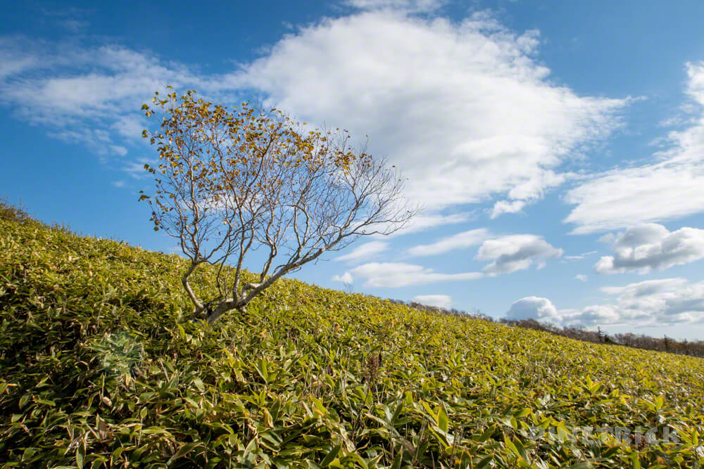 摩周岳 登山 北海道 トレッキング