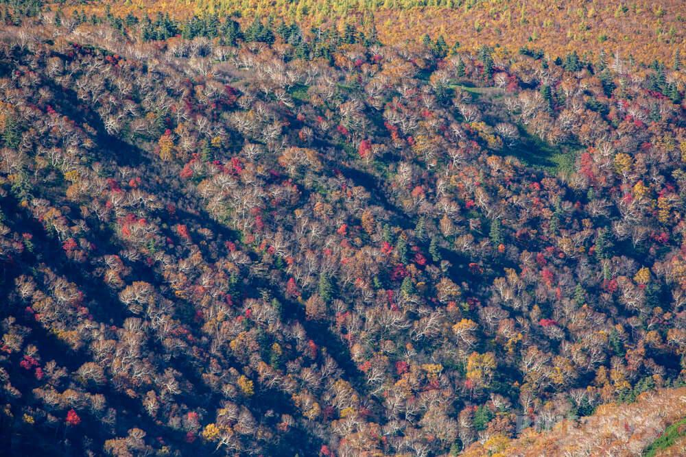 斜里岳 登山 北海道 山頂 紅葉