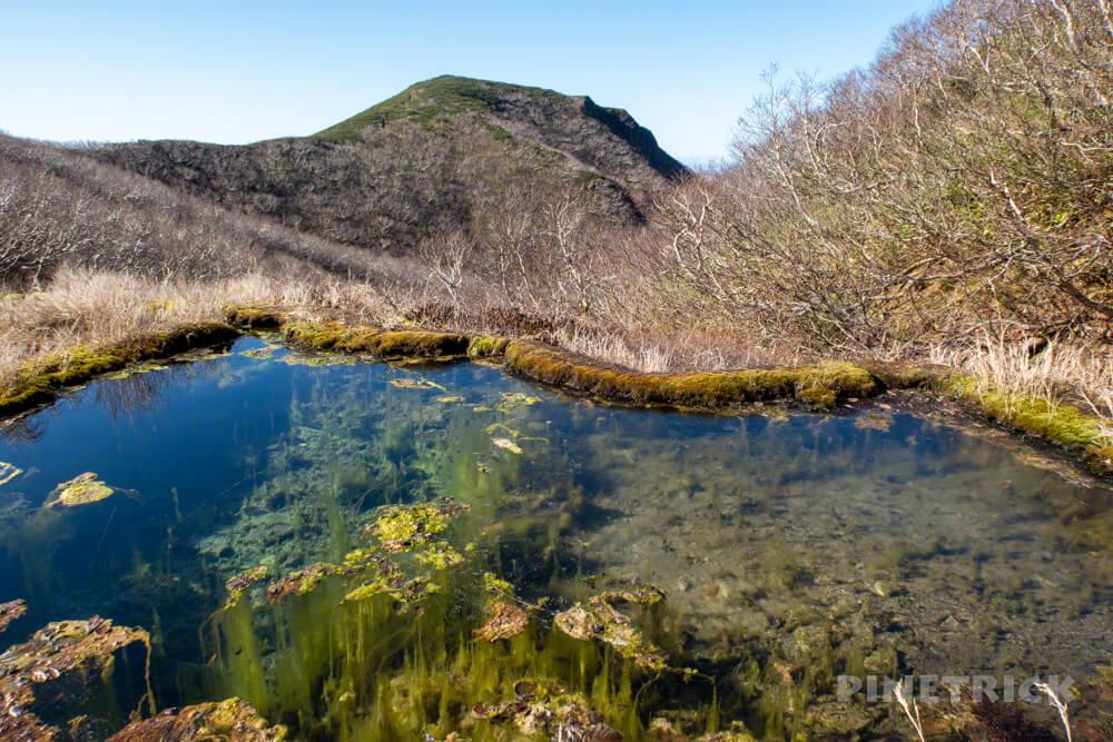斜里岳 登山 北海道 新道 竜神の池