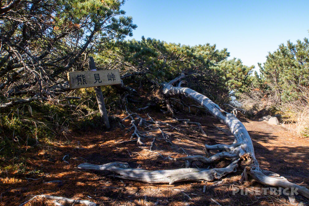 斜里岳 登山 北海道 新道 ハイマツ帯 稜線歩き 熊見峠