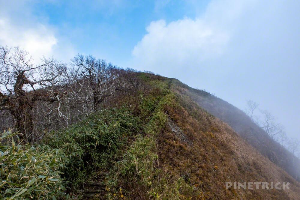 神居尻山 Bコース 登山 北海道 道民の森