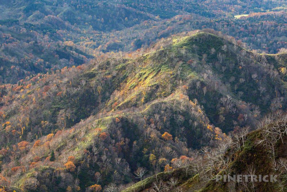 神居尻山 Bコース 登山 北海道 道民の森 紅葉