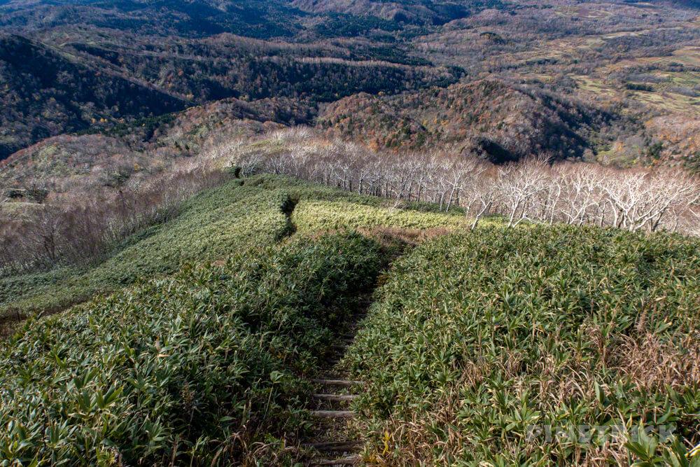 神居尻山 Cコース 登山 北海道 道民の森 紅葉