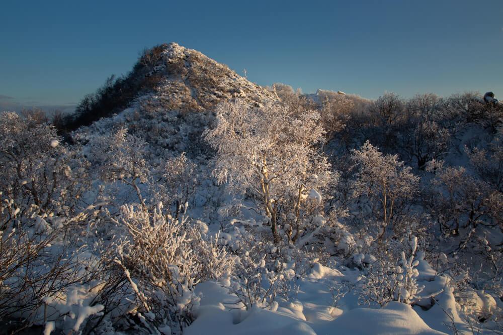 風不死岳 山頂 ご来光登山 樹氷