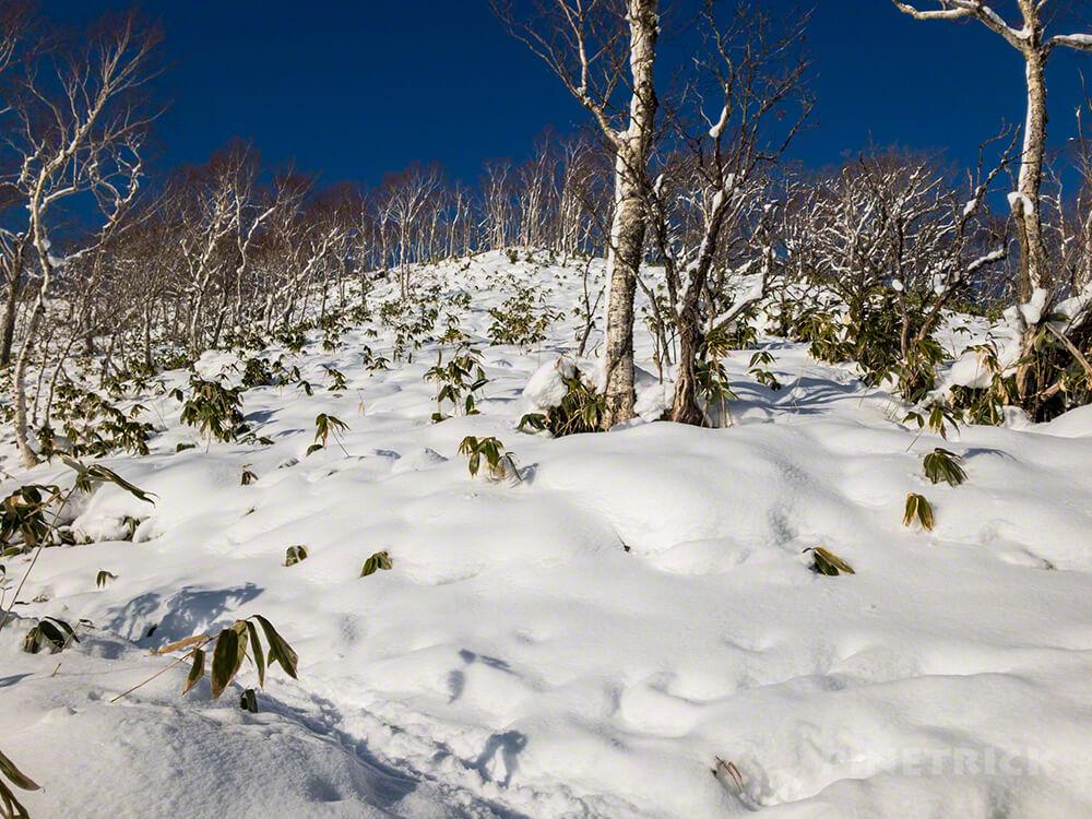 イチャンコッペ山 幌平山 分岐 登山 北海道