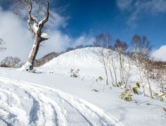 オコタンぺ山 登山 尻滑り ソリ 北海道