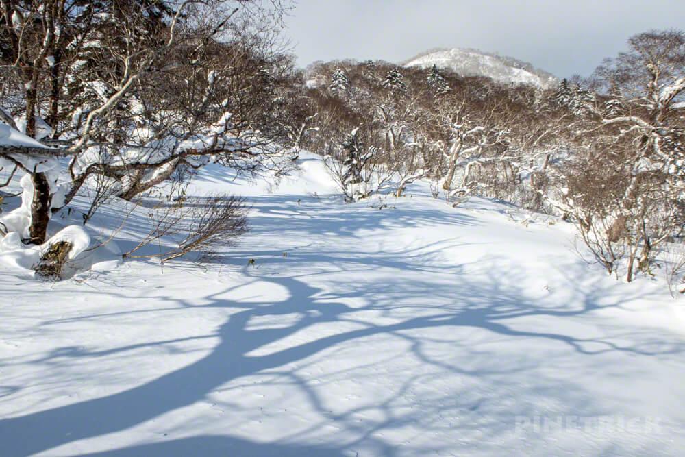 漁岳 林道 冬山 登山 北海道