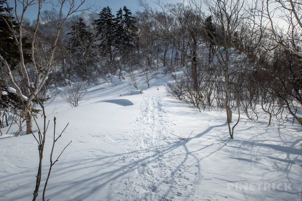 漁岳 林道 冬山 登山 北海道 山頂 恵庭岳 オコタンペ山