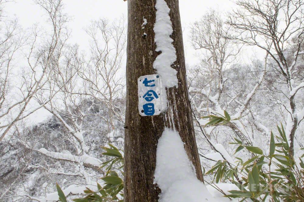 風不死岳 北尾根 冬山 北海道 登山 7合目