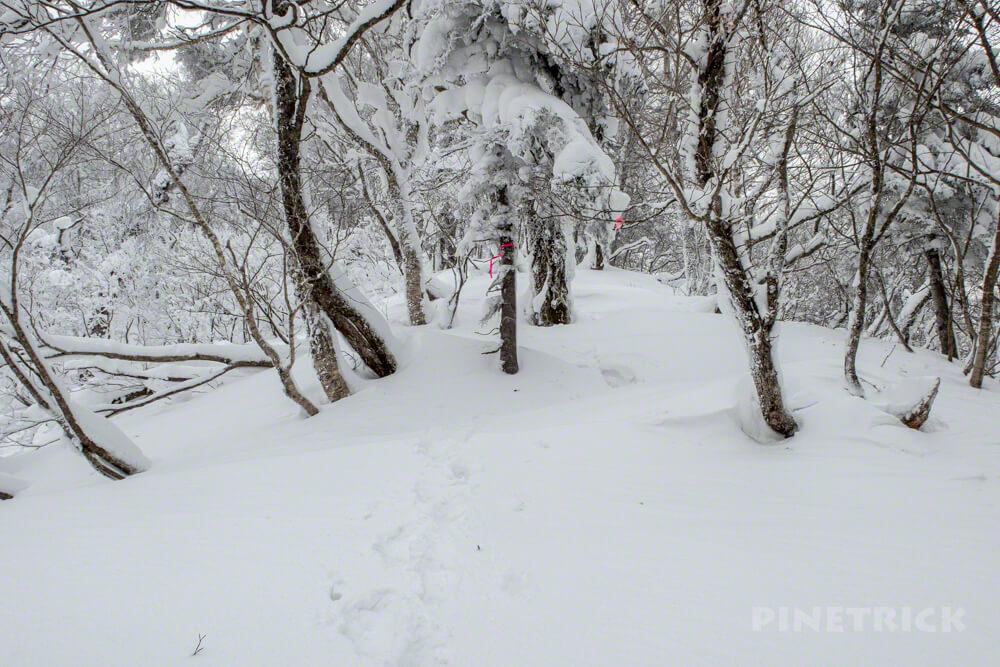 風不死岳 北尾根 冬山 北海道 登山