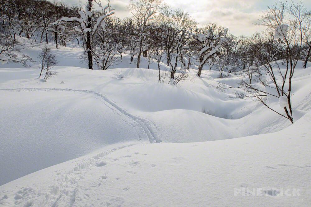 目国内岳 新見温泉 新見峠 北海道 雪山 登山 スノーブリッジ