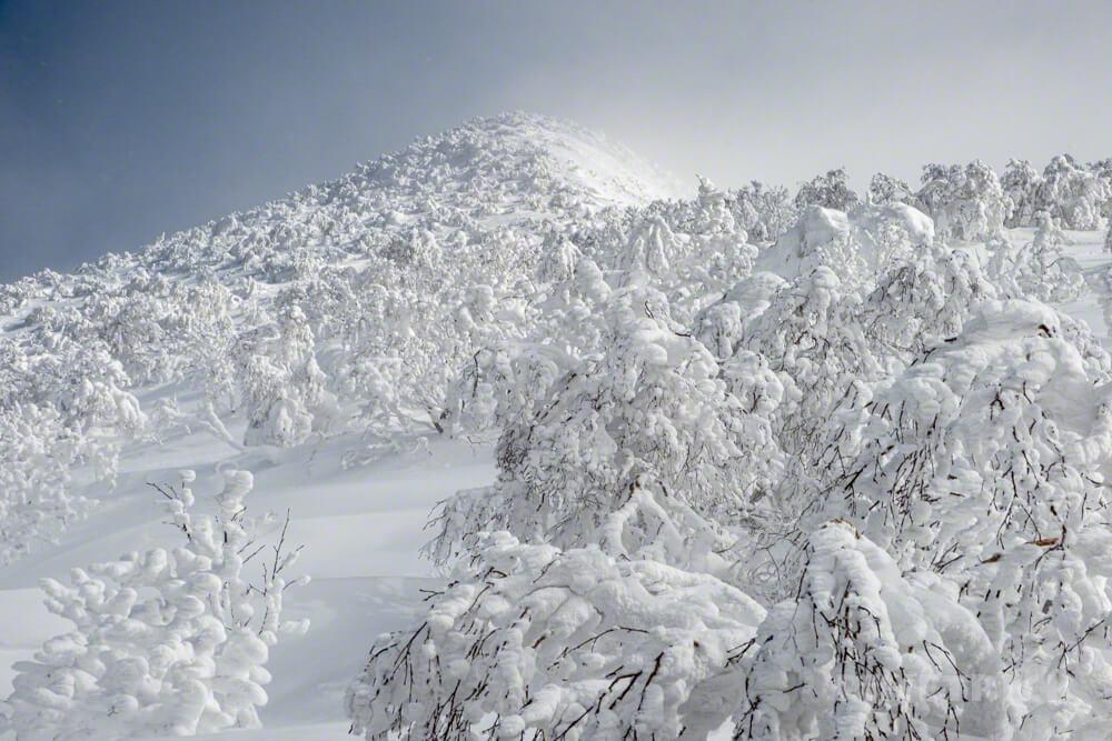徳舜瞥山 冬山 登山 北海道 モンスター 樹氷