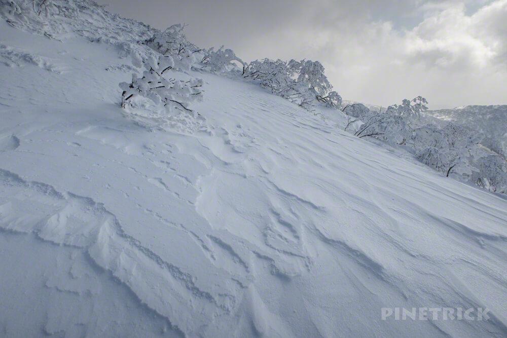 徳舜瞥山 冬山 登山 北海道 モンスター 樹氷 山スキー