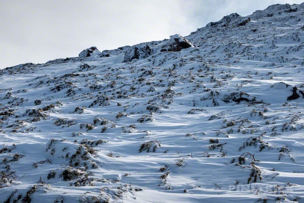 雌阿寒岳 登山 冬山 北海道 ハイマツ帯