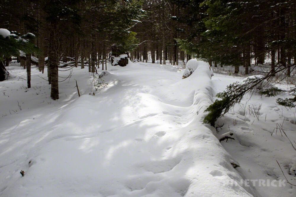 津別峠 冬季通行止め ゲート 展望台 山スキー